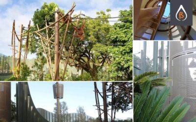 Engineering an Orangutan Habitat